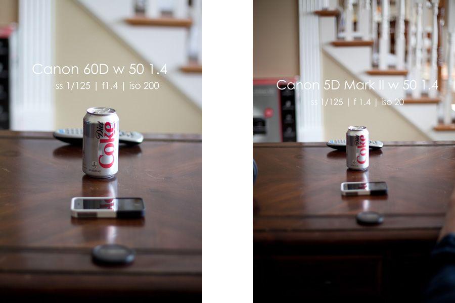 Crop Sensor vs. Full Frame> Canon 60D vs Canon 5D Mark II | Gear ...