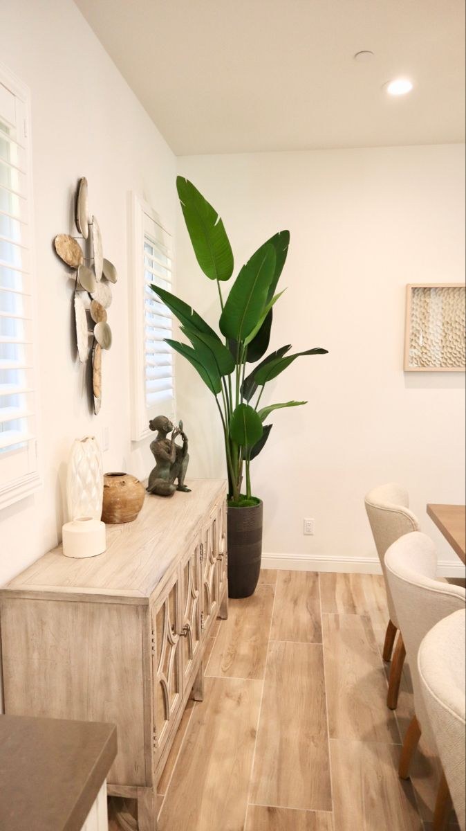 Bird of paradise plant tree for dining room decor