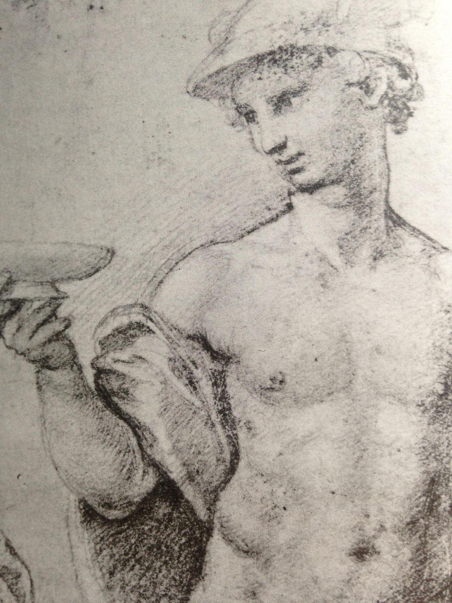 Luigi Speranza -- SANZIO e G. F. Penni --Study for VENERE and ...