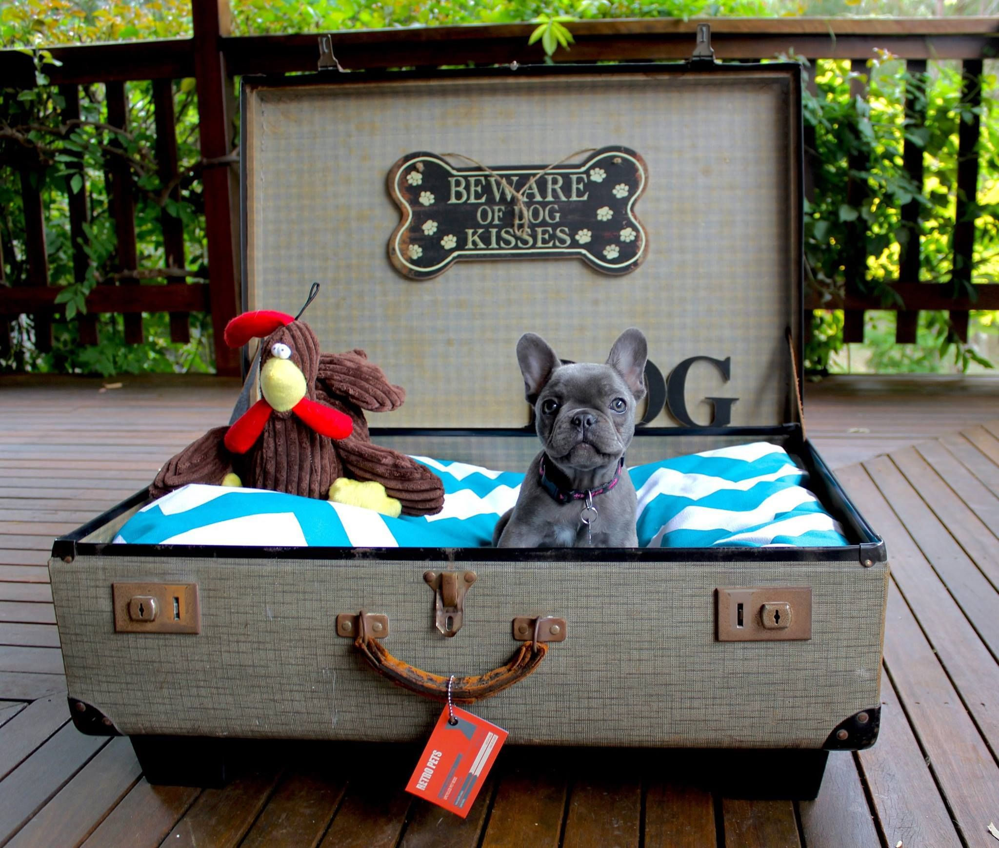 Upcycled Vintage Suitcase Dog Bed for sale 185 (frenchie