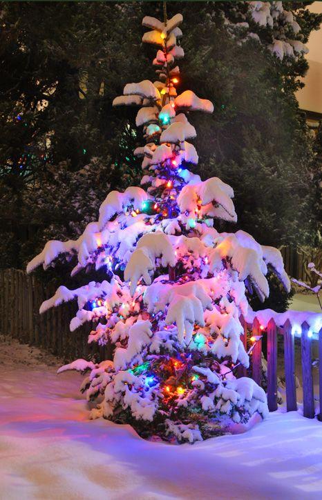 Christmas In West Vancouver Canada Ideas Navidenas Para Cuando Nieve Aunque Es Dificil En La Costa De Astuiras Christmas Christmas Love Beautiful Christmas