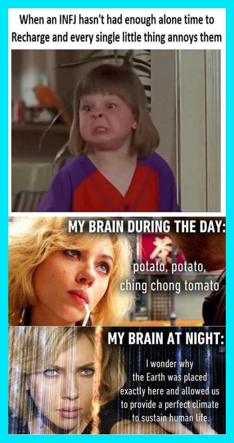 23 Funny Memes Hilarious Humor