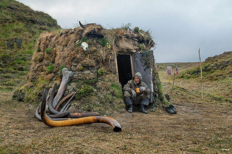 Добыча бивней мамонта в Сибири. Фото (с изображениями ...