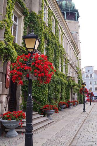 terra flower towers in szprotawa