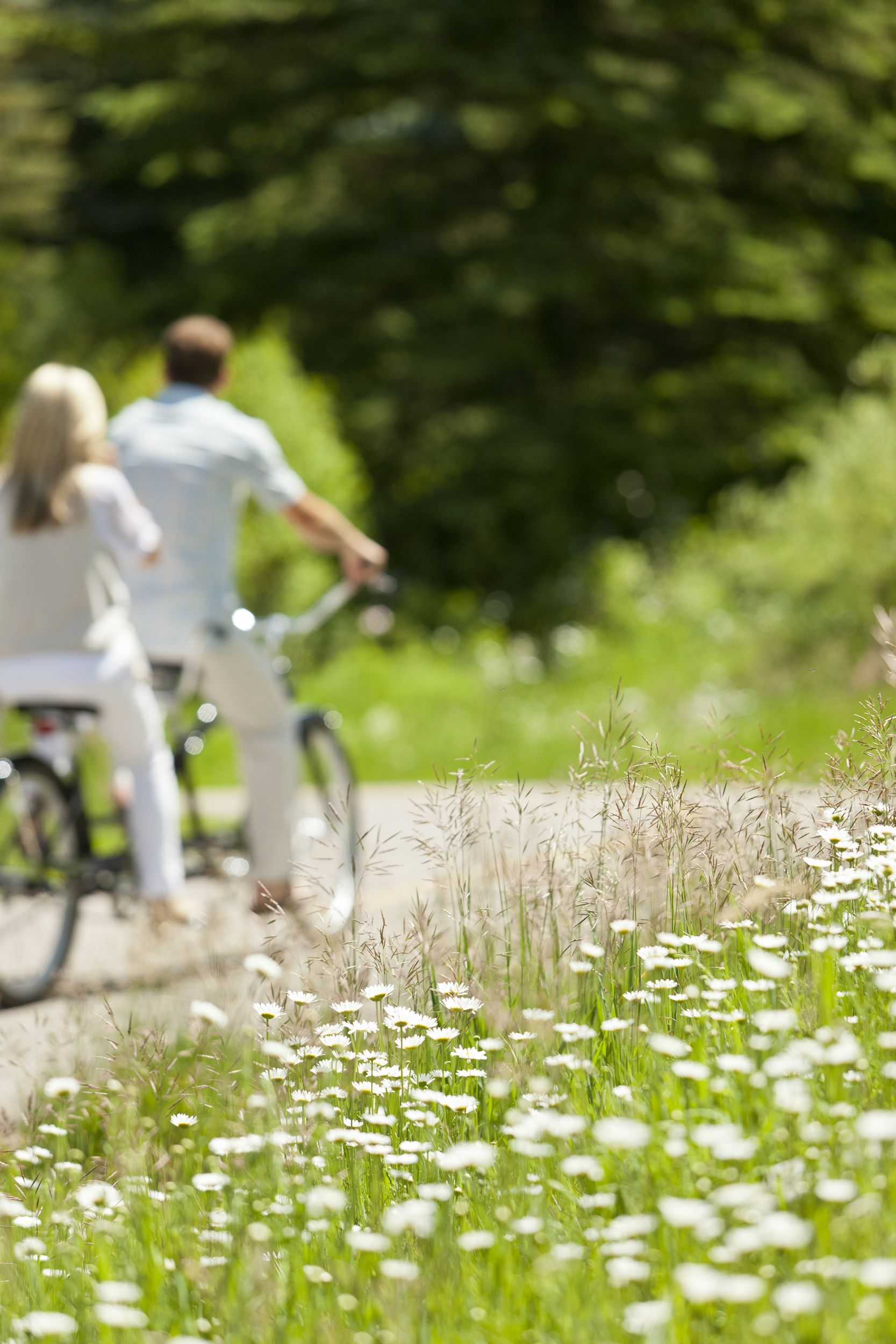Bicycling amidst the wildflowers is a fun summer activity