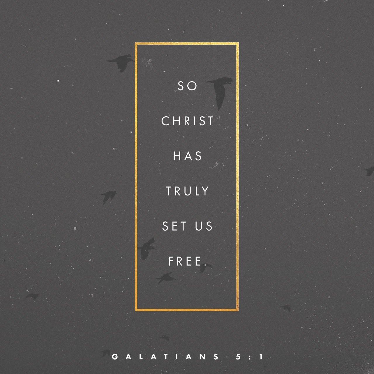 Galatians 51 NIV Bible apps, Freedom in christ
