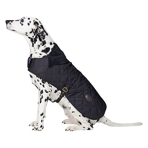 Barbour Polar Dog Coat Dog Coats Black Quilt Dogs