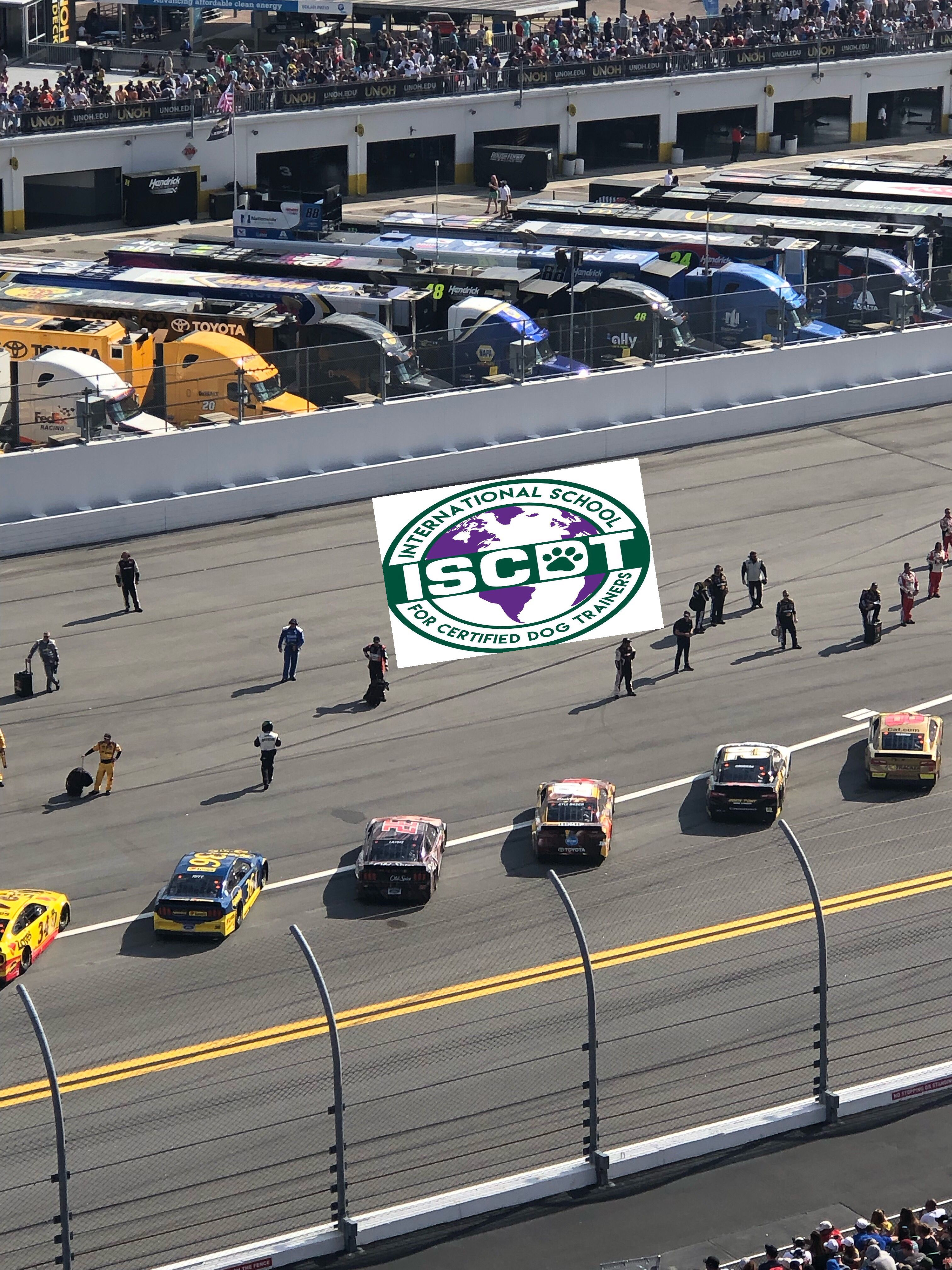 Daytona Dog Track >> Iscdt Is At The Daytona 500 On This Beautiful Sunday We Are