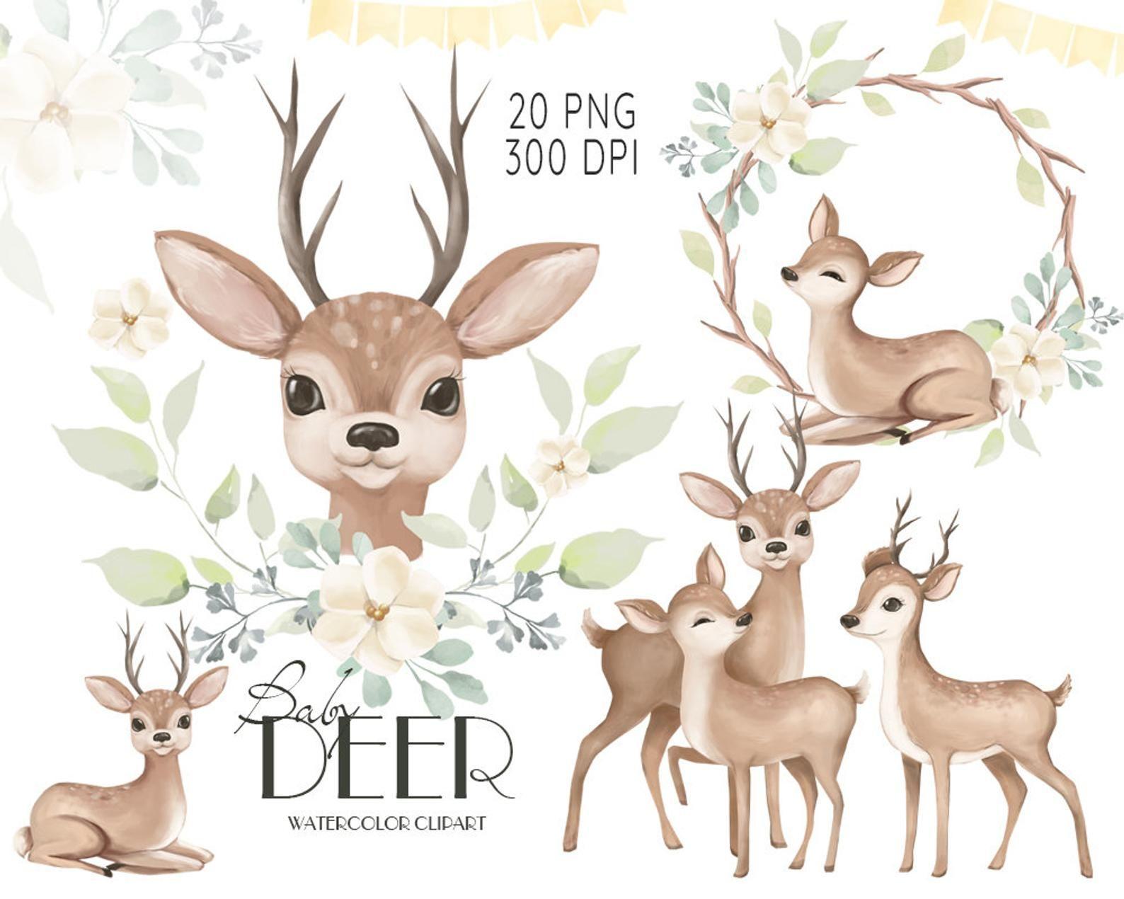 Watercolor Deer Baby Deer Clipart Watercolor Little Animals Cute Deer Baby Shower Clip Art Mother Deer Illustration Nursery Graphics Deer Illustration Watercolor Deer Animal Clipart