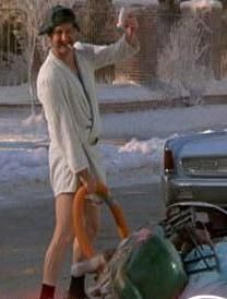 Randy Quaid Christmas Vacation.Image Result For Randy Quaid Cousin Eddie Quotes Above And