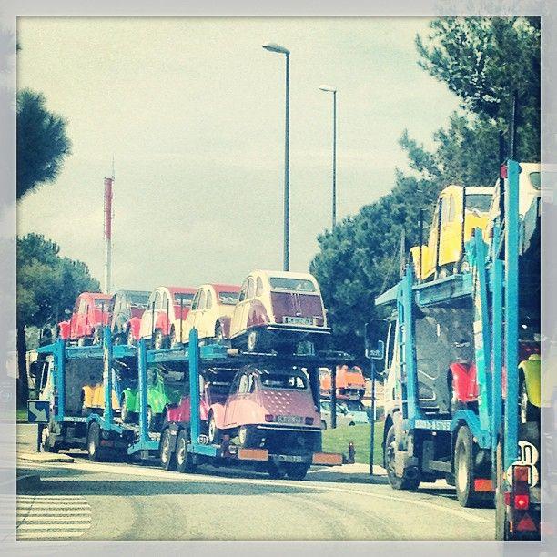 Citroen 2CVs on transporter trucks • Citroen 2CV