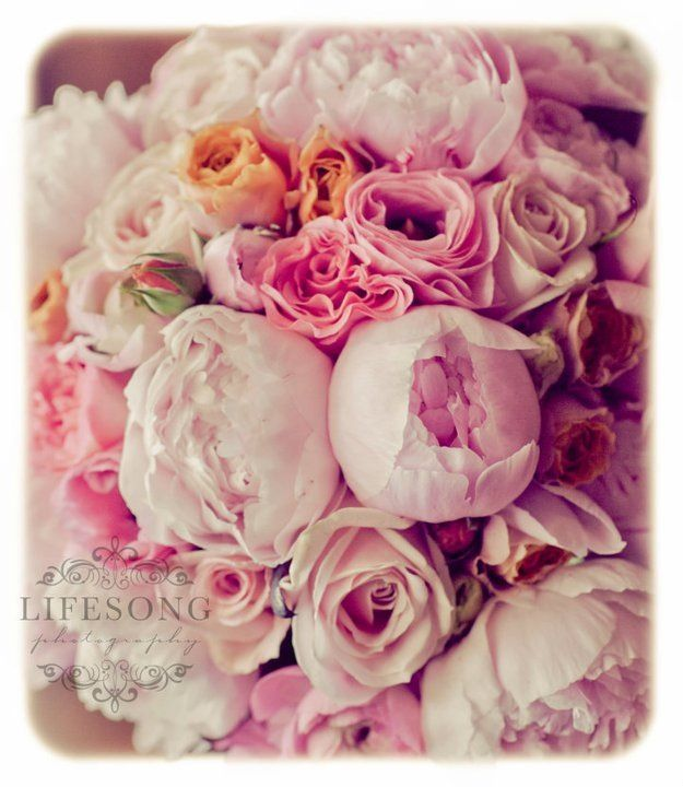 My dream bouquet was created by the amazing Whirly Girl Flowers... All wedding images were captured by Lifesong Photography.