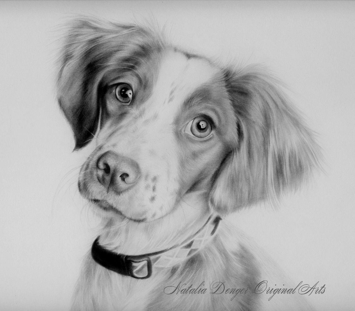 Custom Portrait Animal Pet Portrait Dog Cat Puppy Pencil