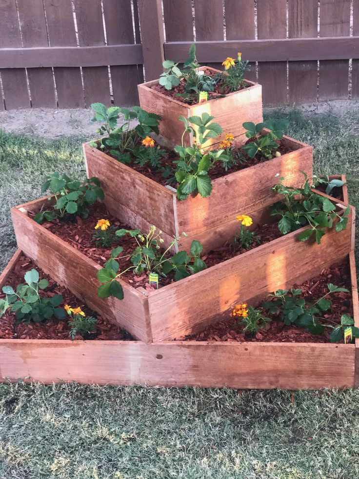 My Cedar Fence Tiered Strawberry Raised Bed Made By Yours Trulyim Very Proud Cedar Raised Garden Vegetable Garden Raised Beds Raised Garden