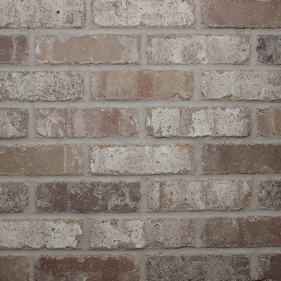 Brick Veneer Collection: Shop Old Mill Thin Brick Systems Colonial 2.25-in X 7.625