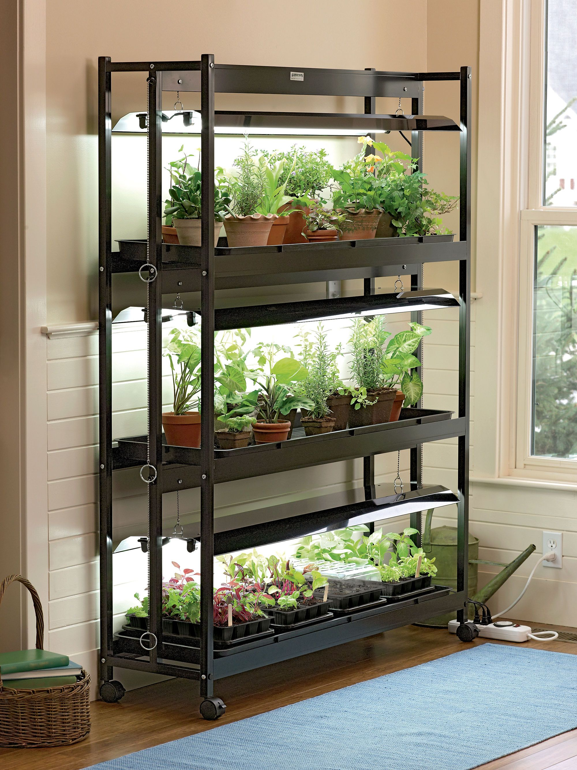 3 tier sunlite garden with t 5 bulbs grow light system i want cheap indoor grow light stand sunlite light garden with plant trays workwithnaturefo