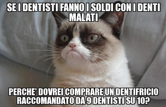 Gatto Arrabbiato Frasi Cerca Con Google Cose Divertenti Funny