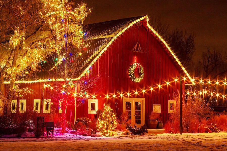 fd69557840ff3fba17cb38a883283606 - Denver Botanic Gardens Christmas Lights Chatfield