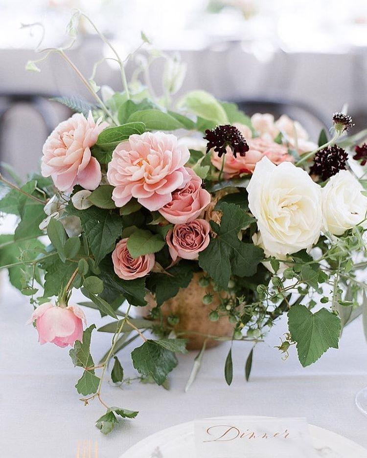 bubble gum oink garden roses with a touch of white an burgundy