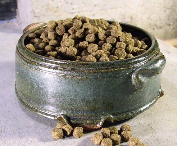 retro dog bowl