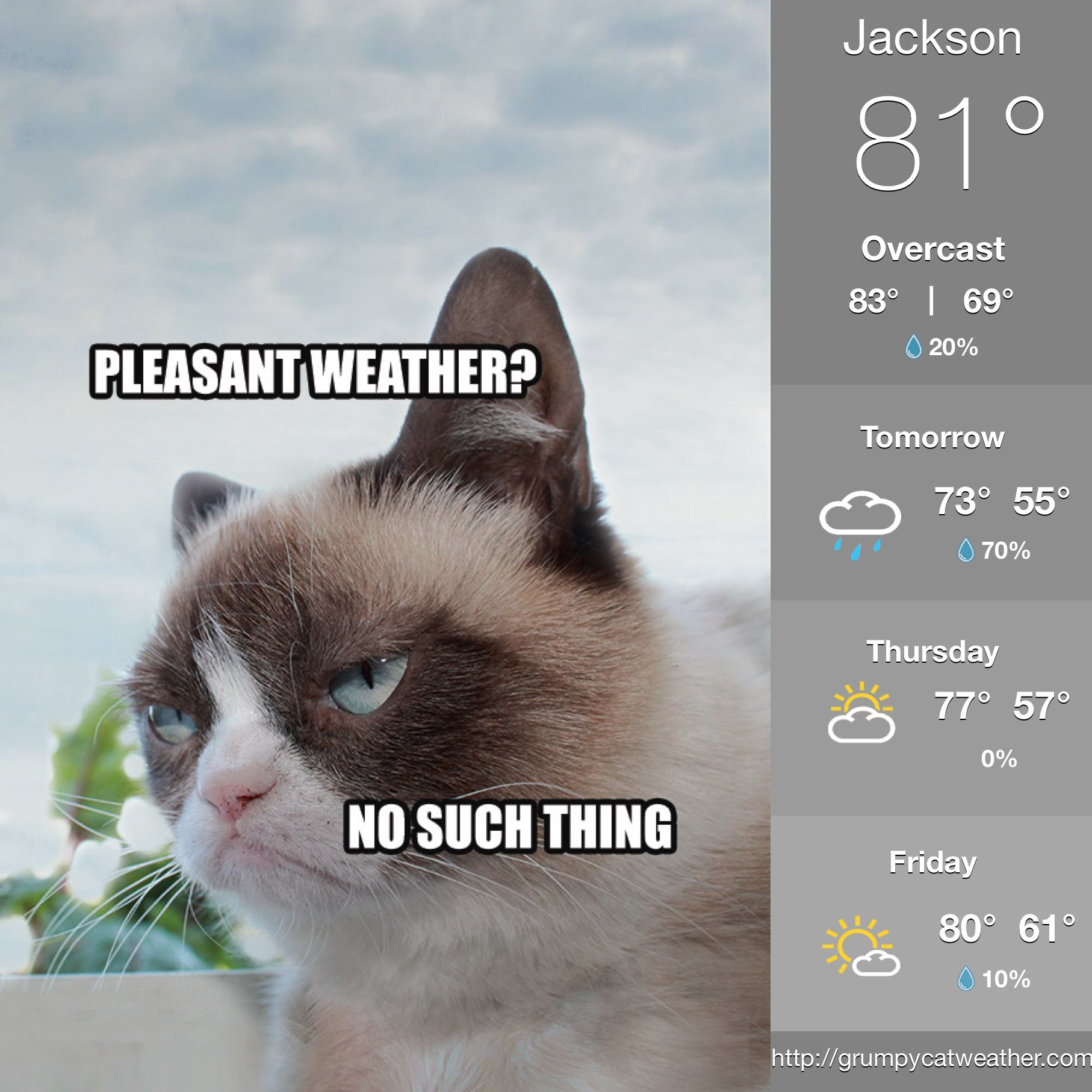 Pin by Debbie Butler on Grumpy cat Good saturday, Good