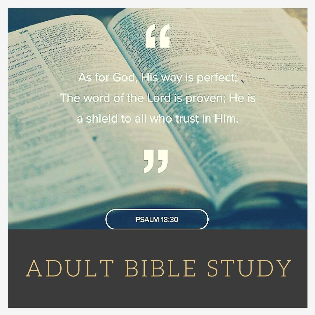 photo regarding Free Bible Study Lessons for Adults Printable named Cost-free Bible exploration courses for all ages like preschool