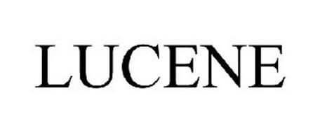 lucene solution provider, lucene consultant, lucene support, lucene integration service, lucene installation, lucene open source