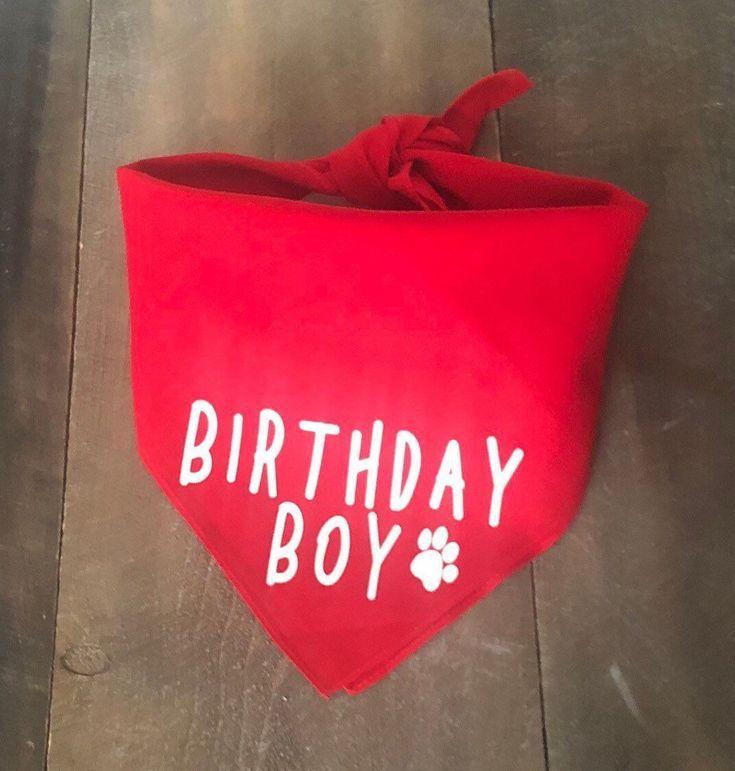 Birthday boy dog bandana dog birthday bandana dog