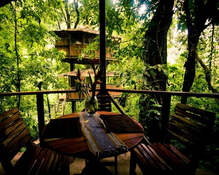 Homepage for finca bellavista treehouse community in costa rica make tree house reservations buy real estate and explore our rainforest village