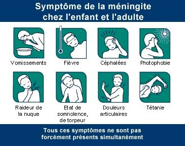 meningite signes et symptomes