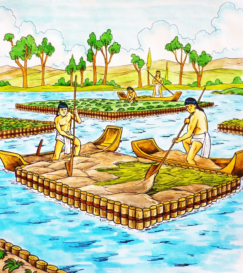 fd6ce7bb69ef2c759b2f6a8d0c534cd2 - Inca Terrace Farming And Aztec Floating Gardens
