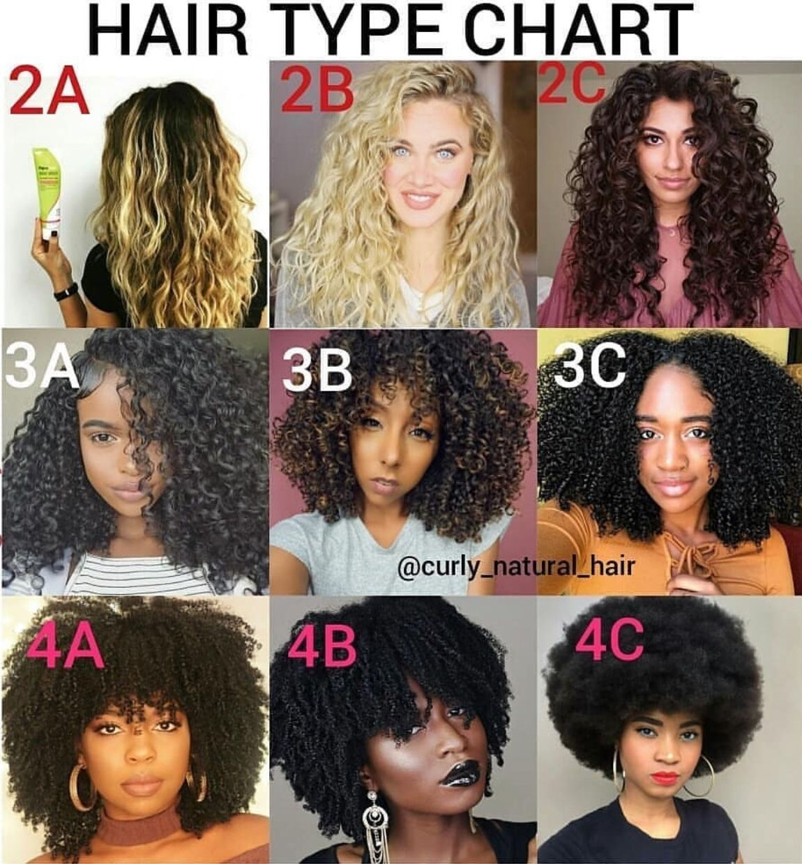 Pin by BeyInFormation on Hair Tips in 2019 Curly hair