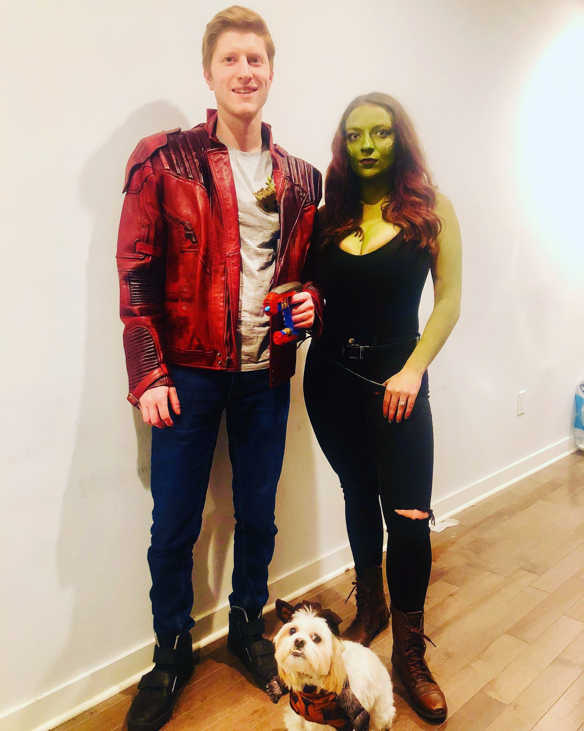 DIY gamora and starlord costume Rocket  dog costume Baby groot Peter quill Hallbaby