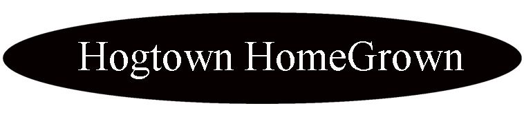 What Is Hogtown Homegrown Well Obviously It Is A Newsletter And