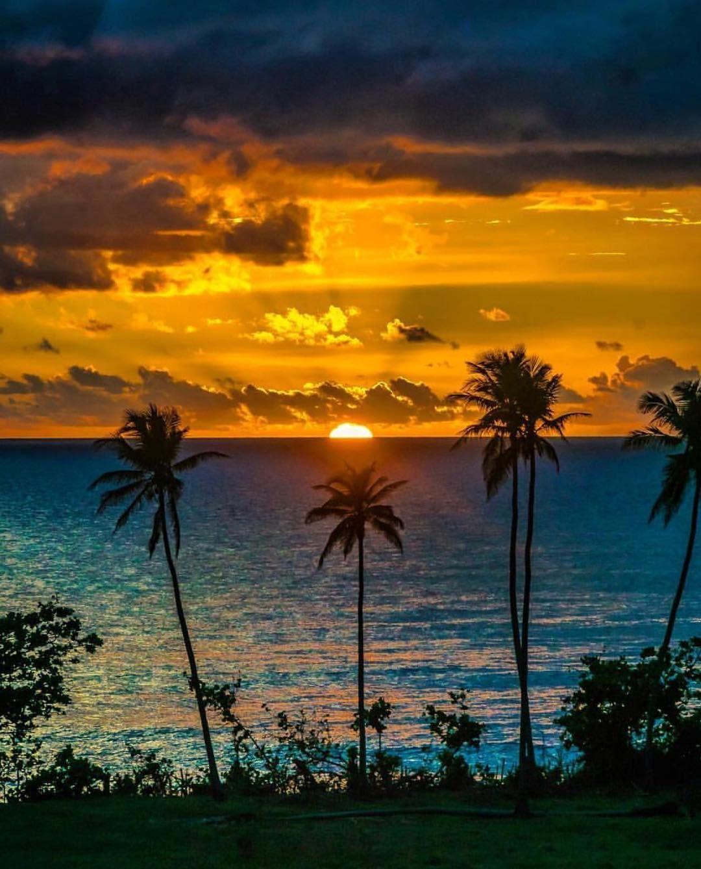 Los Colores De La Isla Del Encanto Rincon Puerto Rico Puerto Rico Beaches Puerto Rico Scenery