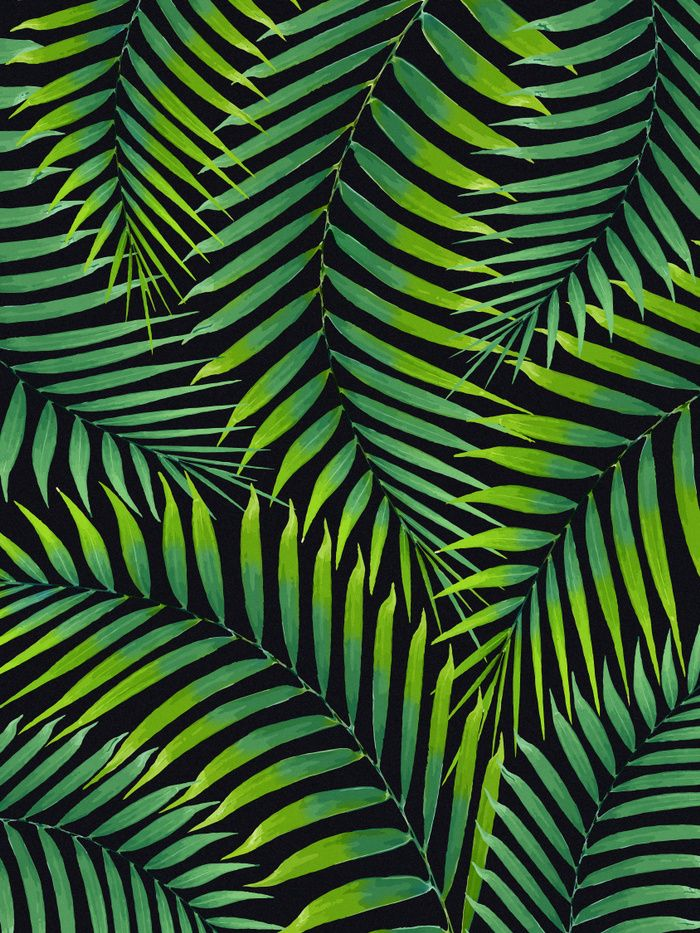 Watercolor Tropical Green Palm Leaves On A Black Background