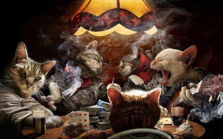 Cats Playing Poker Art Pintura De Gato Perros Jugando Poker Cruces Pintadas