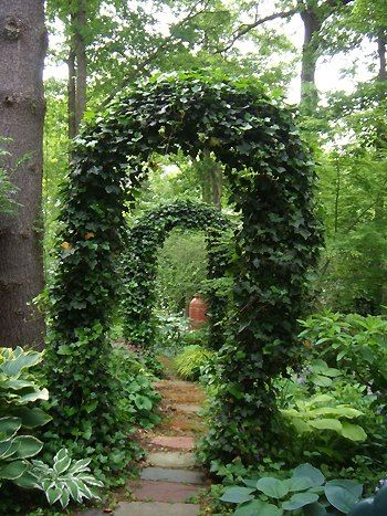 Ivy Arches Dream Garden Beautiful Gardens Hidden Garden