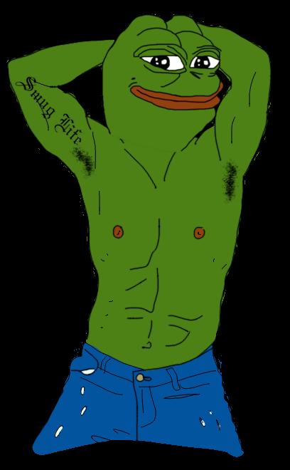 Tumblr Static Mn50vbdrfb4w8s0kcccoso8s Png 408 660 Pixels Frog Meme Memes Frog Wallpaper
