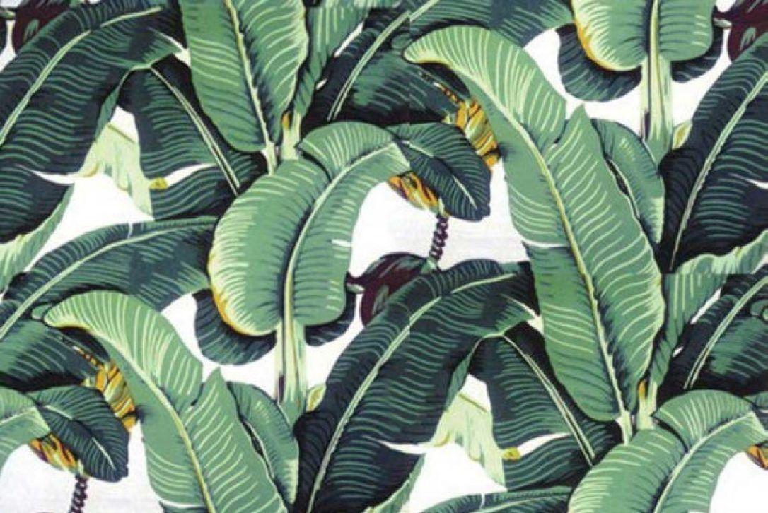 Image result for modern palm leaf wallpaper Iconic