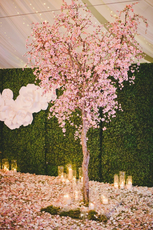 Pin By Brenda Ramirez On 15 Pic Ideas Blossom Tree Wedding Cherry Blossom Wedding Theme Cherry Blossom Wedding