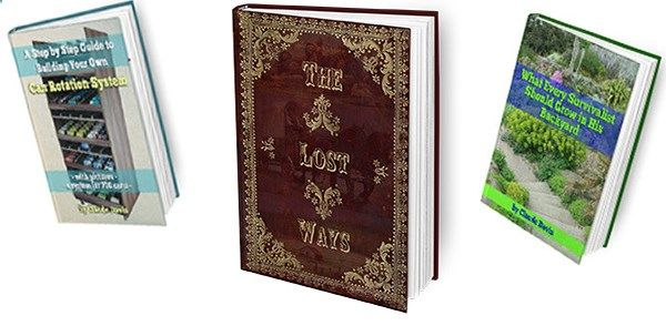 The Lost Ways Book Review
