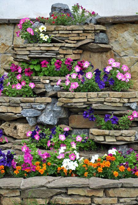 Rosliny Na Skalniak Jakie Rosliny Na Skalniak Stone Flower Beds Garden Decor Projects Flower Beds