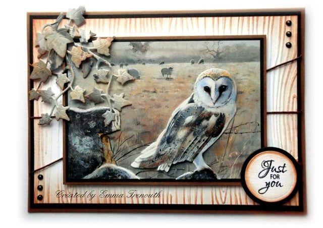 Male Birthday, pollyanna pickering owl image, woodgrain