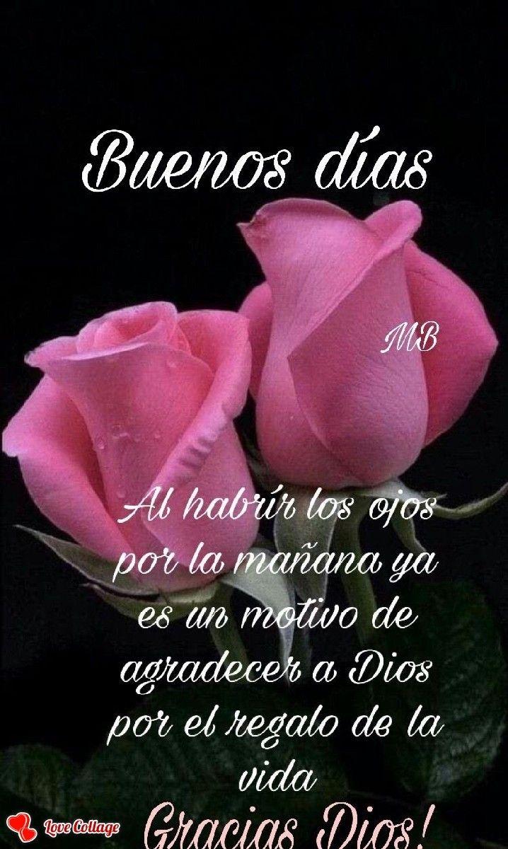 Pin By Jose Luis Mercado On Spanish Good Days In 2020 Good Morning In Spanish Good Day Quotes Good Day Wishes