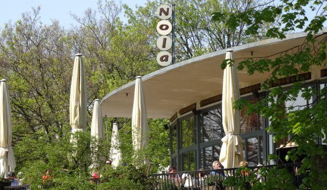 Restaurant Nolas - Swiss restaurant, great cheese fondue, lovely terrace, coffee, brunch, lunch, dinner