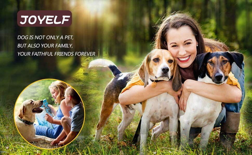 Joyelf Orthopedic Dog Bed Dog Sofa Bed Orthopedic Dog Orthopedic Dog Bed