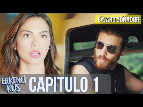 12 Pájaro Soñador Erkenci Kus Capitulo 1 Audio Español Youtube Incoming Call Screenshot Film Incoming Call