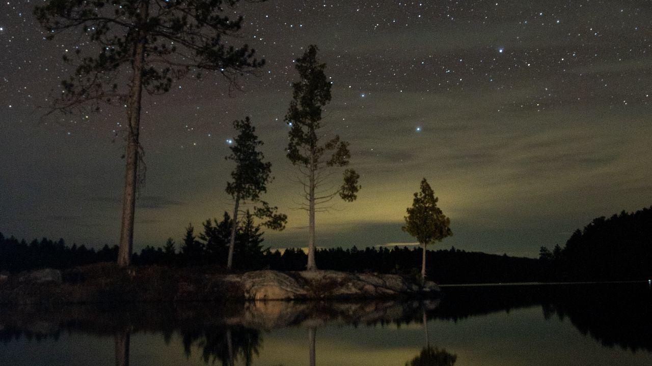 Silhouette Tree Lake Starry Night 1080x2160 Wallpaper Night Sky Wallpaper Starry Night Art Dark Wallpaper Iphone