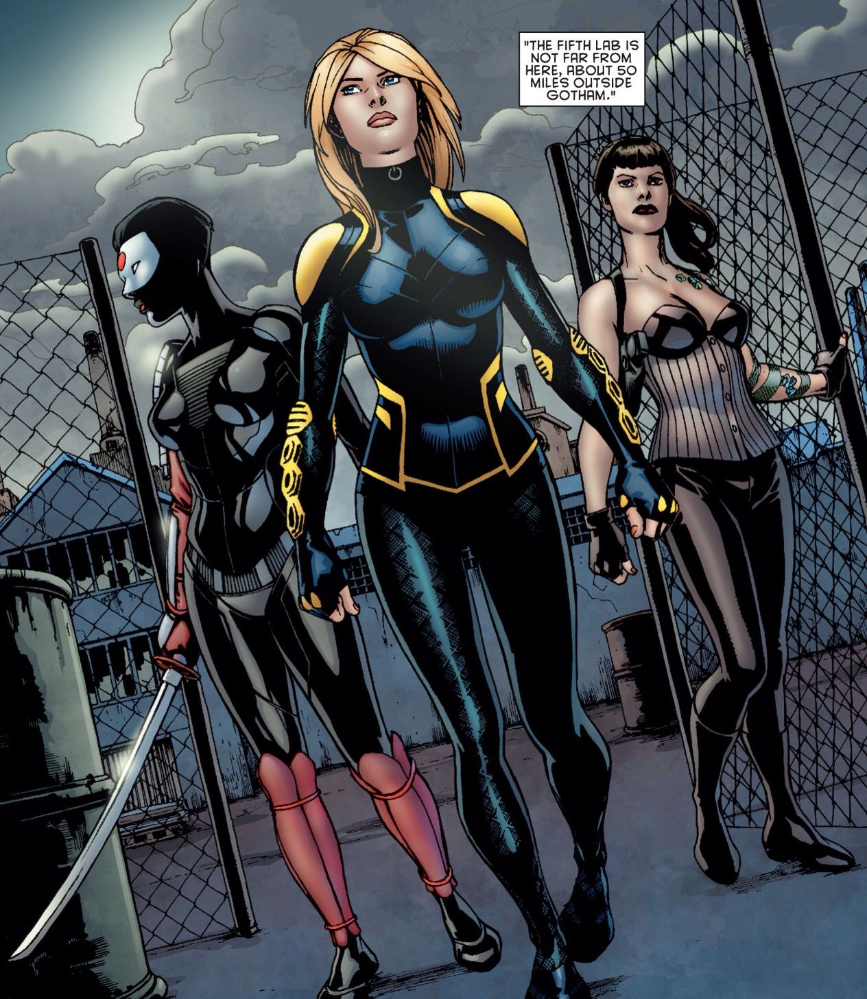 Katana Black Canary Starling Birds Of Prey Black Canary Dc Comics Women Arrow Black Canary
